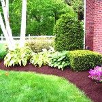 simple-landscaping-ideas-on-a-budget
