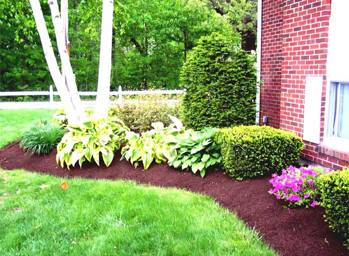 Landscape design for Easy to care for garden designs