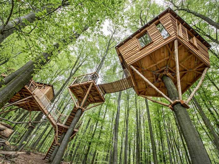 treehouse-cabins-in-branson