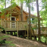 treehouse-cabins-ohio