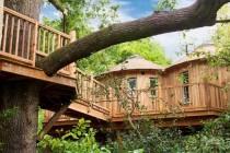 treehouse-cabins-uk