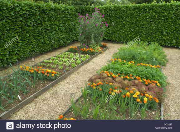 Benefits-low-maintenance-garden-design