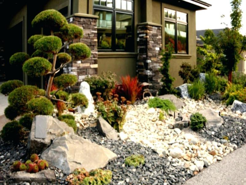 Inspect-desert-landscaping-ideas-for-front-yard