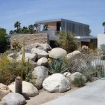Survey-desert-landscaping-ideas-for-front-yard