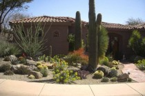 Wondrous-desert-landscaping-ideas-for-front-yard